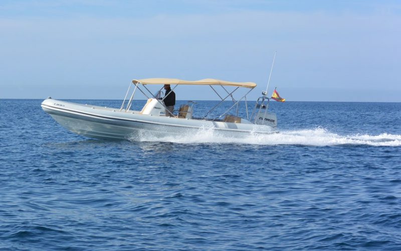 rib-charter-mallorca-3-0__picton-cobra-8m-rib